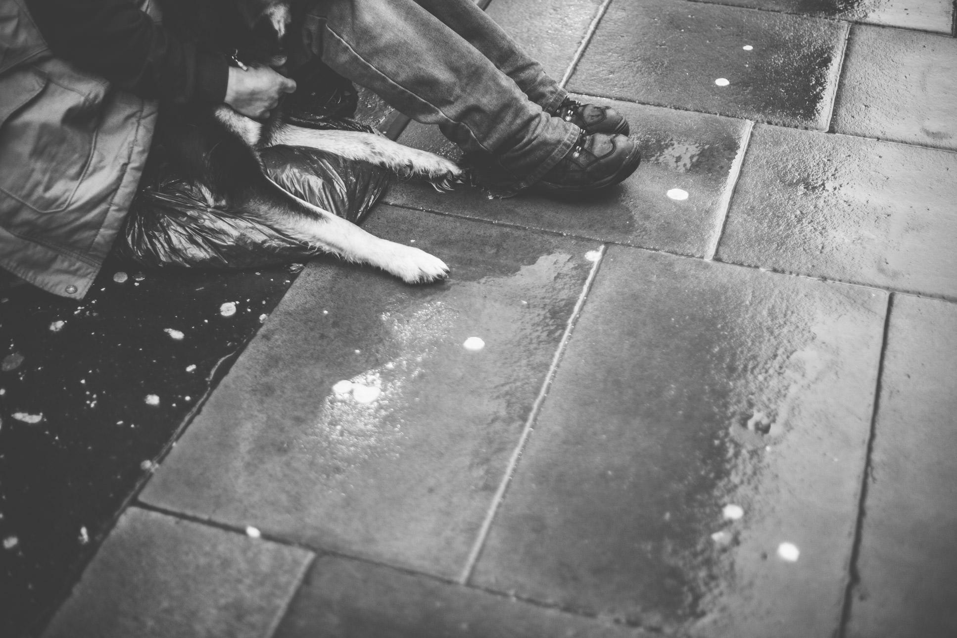 Street Photography37