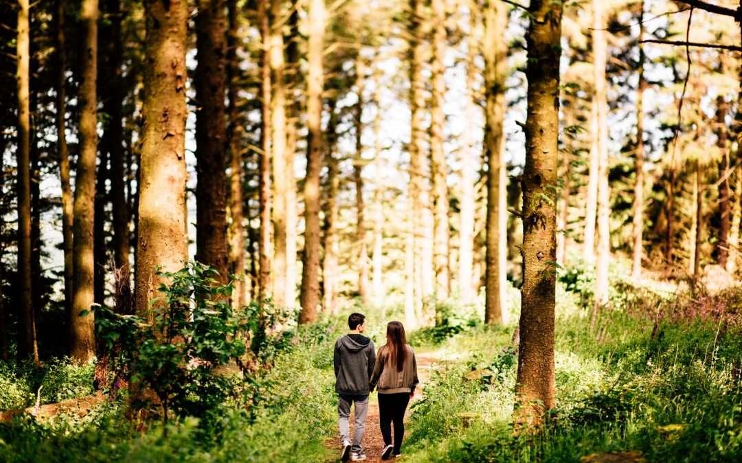 Beacon Fell, Bowland Forest Pre-Wedding Photography – Yasmin & Zachary