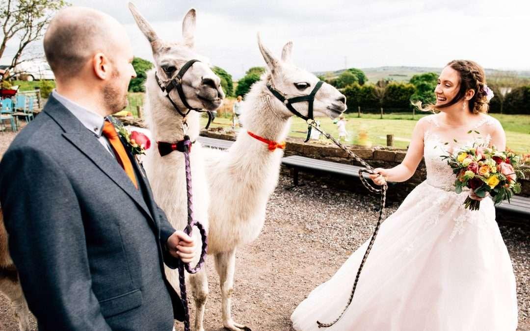 The Wellbeing Farm Wedding Photography – Rachel & Sean